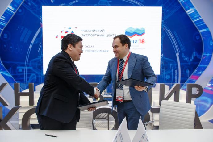 """Kazakh Invest"" took part in the work of the Russian Investment Forum"