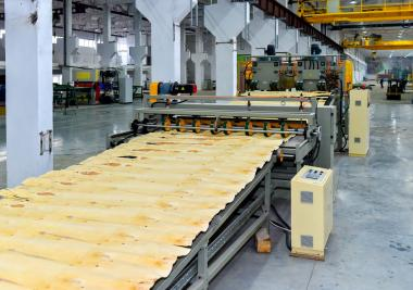 2.2 billion tenge invested by Turkish investors in a plywood plant in North-Kazakhstan region